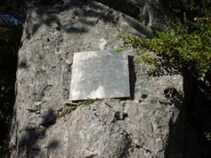 placa1